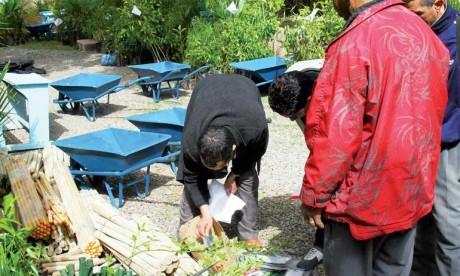 INDH: Approbation du programme d'action de lutte contre la précarité