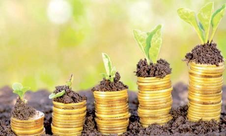 Un plan de pérennisation pour les projets d'agriculture solidaire
