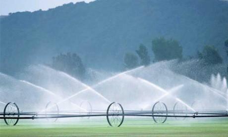 Les performances technico-économiques des exploitations agricoles passées au crible