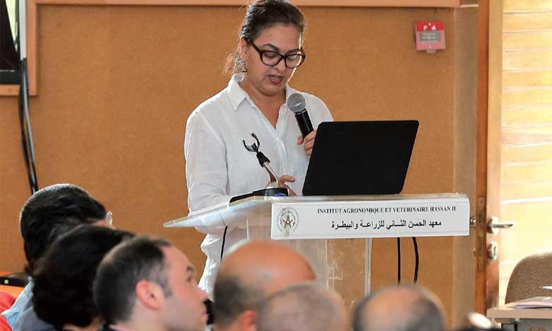 Aïd Al Adha: 108.000 éleveurs enregistrés  et 3,7 millions d'animaux identifiés
