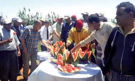 Festival de la pastèque: une autre façon de vulgariser les bonnes pratiques agricoles