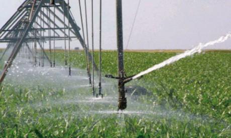 Un aménagement hydro-agricole  de 3.000 ha en projet à Jerada