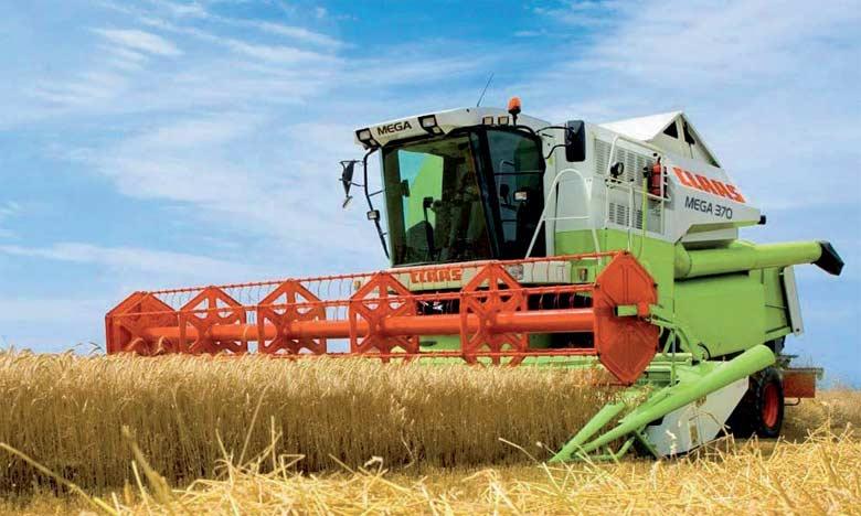 La canicule, qui touche depuis la fin du mois de juillet les principales zones de production (UE, Russie, États-Unis), pourrait faire repartir à la hausse l'Indice des prix du blé.  Ph. DR