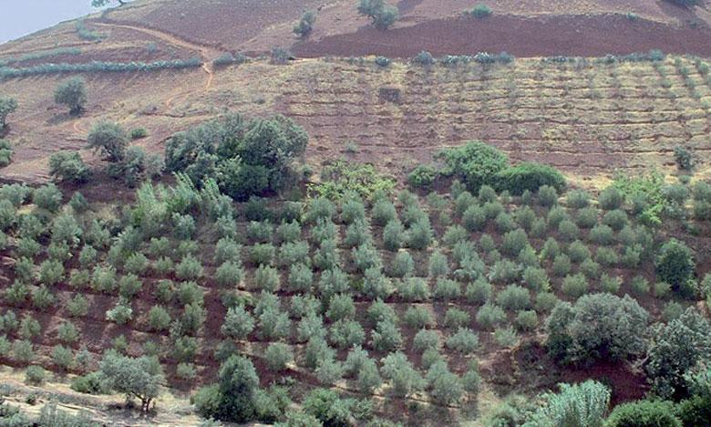 Agadir accueillera une conférence internationale sur la gestion de la pénurie en eau