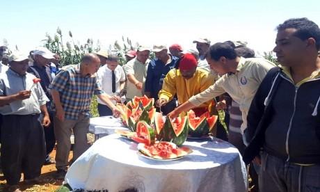 Festival de la pastèque : une autre façon de vulgariser les bonnes pratiques agricoles
