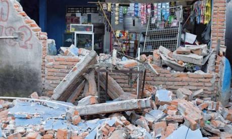 Le bilan des séismes atteint 555 morts