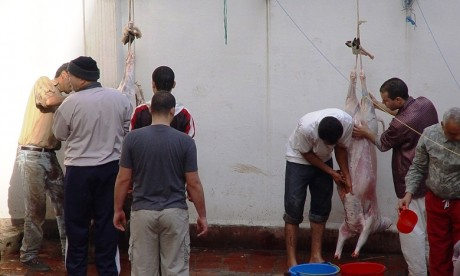 Lancement de l'opération «Al Gazar Diali» au profit des professionnels de la boucherie