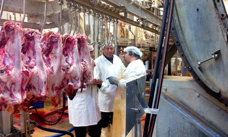 Les habitants de Tétouan pourront accomplir l'abattage du mouton de l'Aïd Al-Adha au sein de l'abattoir relevant de la commune urbaine. Ph : DR