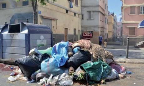 Plus de 8.600 tonnes de déchets collectés durant la période de l'Aid Al-Adha