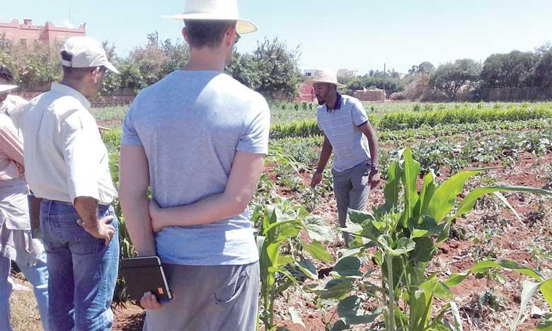 Approbation d'un accord de coopération dans le domaine de la formation professionnelle agricole et  de l'encadrement technique