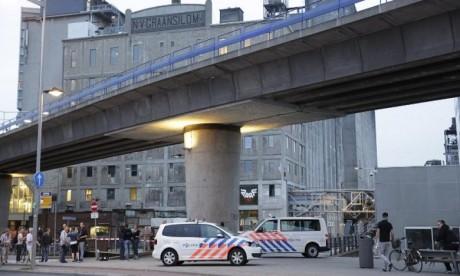 Attentat déjoué aux Pays-Bas : 100 kg d'engrais retrouvés chez les suspects