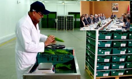 Agro-alimentaire :  les exportations ont atteint 53,5 MMDH en 2017