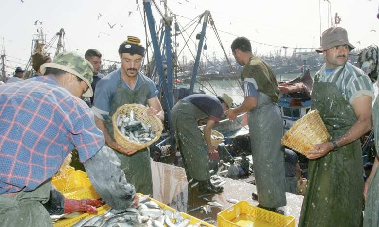 Selon le ministère, en sa qualité de pays disposant de stocks halieutiques importants, le Maroc est directement interpellé pour agir contre la pêche INN.