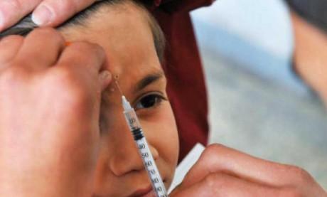 Série de mesures pour lutter contre la leishmaniose dans les établissements scolaires