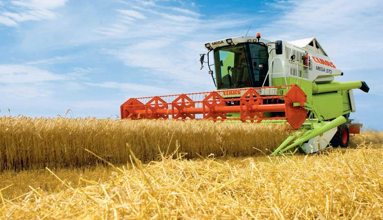 La sécheresse qui sévit dans les principaux pays producteurs a a provoqué l'envolée du prix du blé sur les marchés internationaux