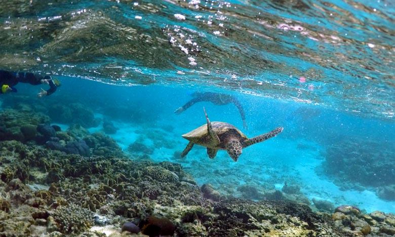 L'Australie tente de rassurer les pays du Pacifique