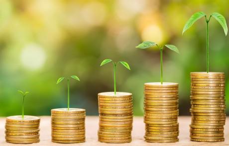 De 13 milliards de dollars en 2013, les obligations vertes, lancées en 2007, sont passées à 48 milliards de dollars en 2015 et ont atteint 100 milliards de dollars en 2016.