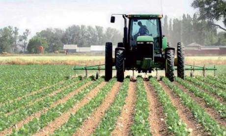 Ce qu'entreprend le Maroc pour la transformation digitale de son agriculture