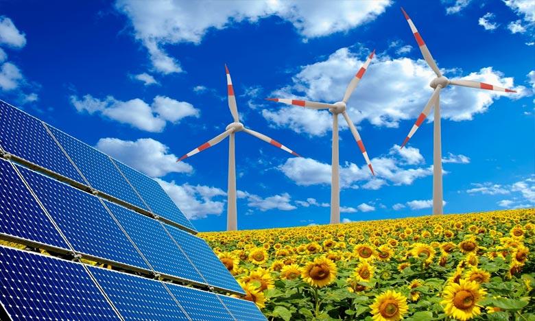 Le Maroc a relevé, lors de la COP22, de 42% d'ici 2020 l'objectif de la part des énergies renouvelables issues de la production d'électricité à 52% d'ici 2030. Ph. DR