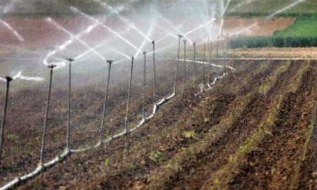 Une batterie de mesures anticipatives  pour garantir le succès de la saison agricole
