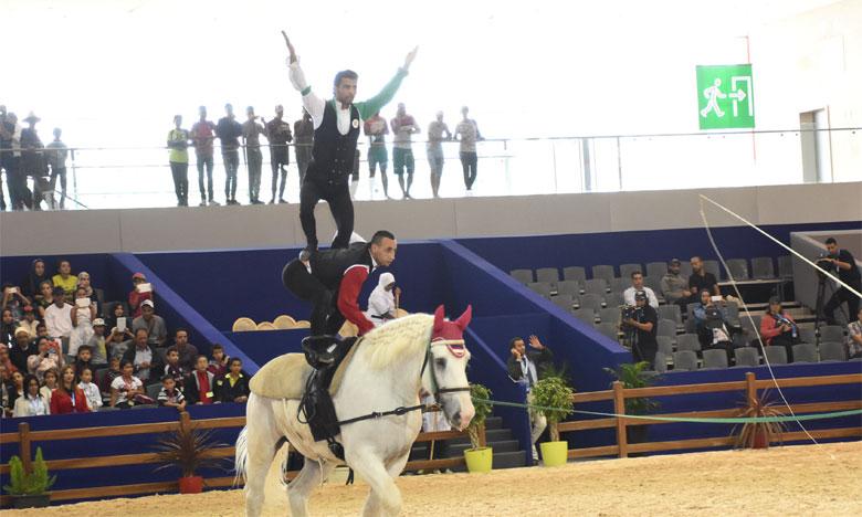 Les sports équestres à l'honneur au Salon du cheval