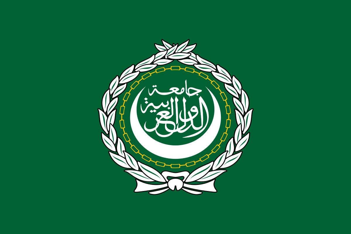 Une Marocaine à la tête de la direction de la femme, de la famille et de l'enfance de la Ligue des Etats arabes
