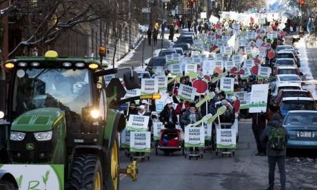 Pendant la marche, accompagnés par une demi-dizaine de tracteurs, les manifestants ont brandi des pancartes ou frappaient sur des casseroles. D'autres poussaient devant eux un panier d'épicerie. Ph : AFP