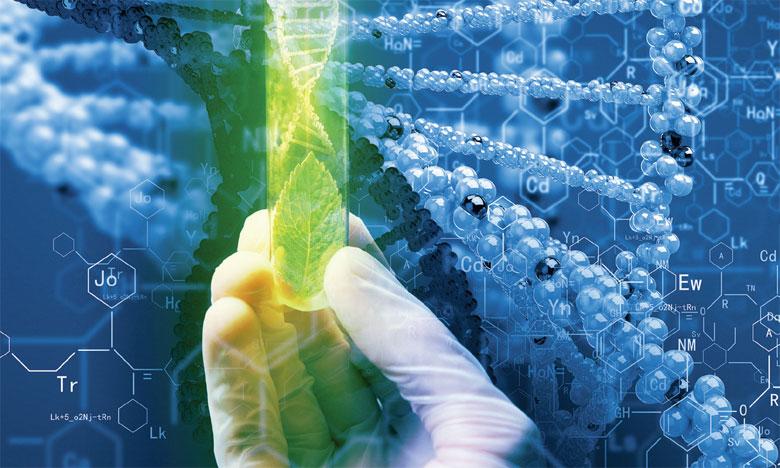La FAO et le gouvernement suisse  lancent un concours de l'innovation