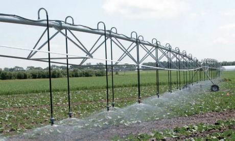 La saison agricole démarre dans des conditions plus favorables que l'année écoulée