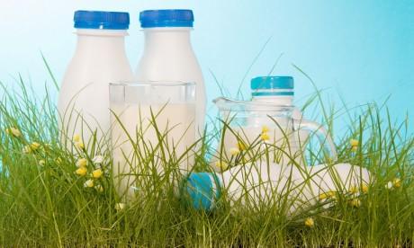 Plus de 63% des exportations de lait va en Mauritanie