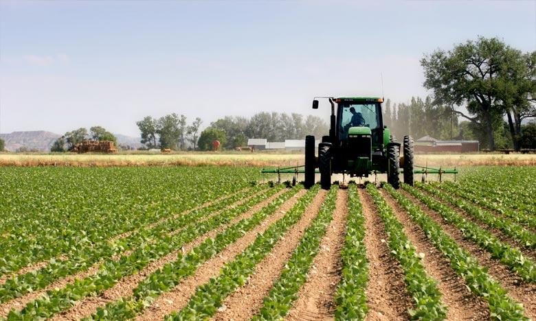 Khémisset  se prépare pour  la saison agricole 2018-2019
