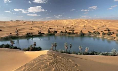 L'Observatoire du Sahara  et du Sahel lance son premier appel à projets