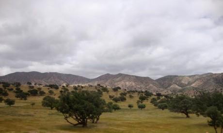 La DMN prévoit pour la journée du samedi, un vent modéré à assez fort d'Est sur le Tangérois, faible à modéré de Sud à Ouest ailleurs. Ph : DR