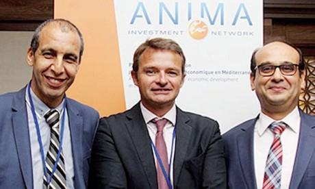 Le Maroc à la tête d'Anima  Investment Network
