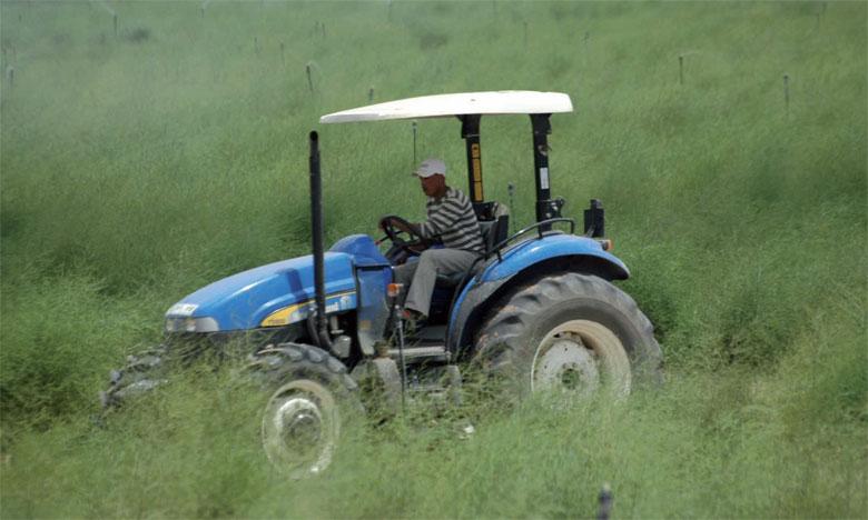 Un million d'hectares au profit des petits agriculteurs