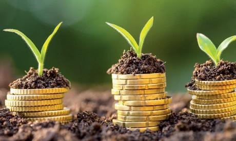 Seulement 0,5% du portefeuille des investisseurs à fin2017