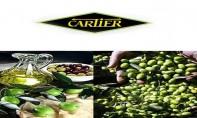 Profit warning sur les résultats semestriels de  Cartier Saada