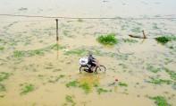 Depuis 24 heures, la ville de Da Nang a reçu 635 mm d'averses, un record des dix dernières années. Ph : DR