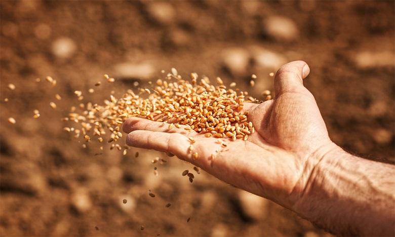 La campagne agricole s'annonce sous les meilleurs auspices
