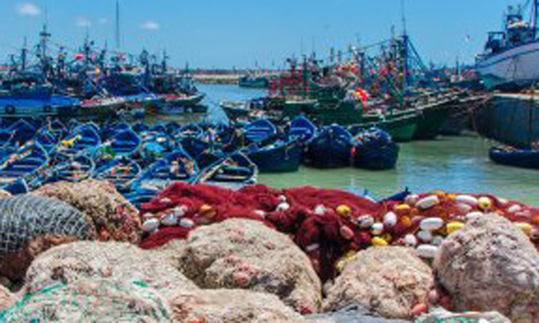 La pêche: Une composante fondamentale du tissu socioéconomique local
