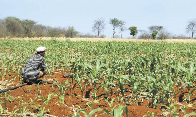 La Semaine africaine du climat en mars au Ghana