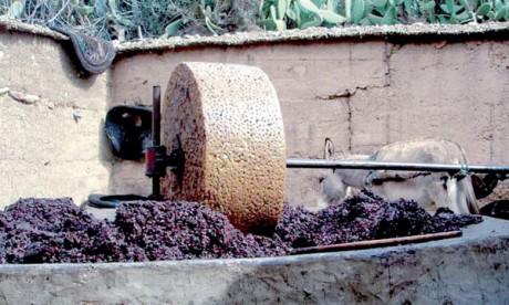 Huit unités de trituration d'olives interdites d'activité à Taounate