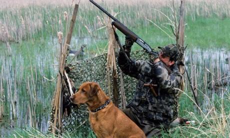 La chasse est un loisir qui contribue au développement des espaces ruraux et qui maintient l'équilibre de la dynamique floristique et faunistique.