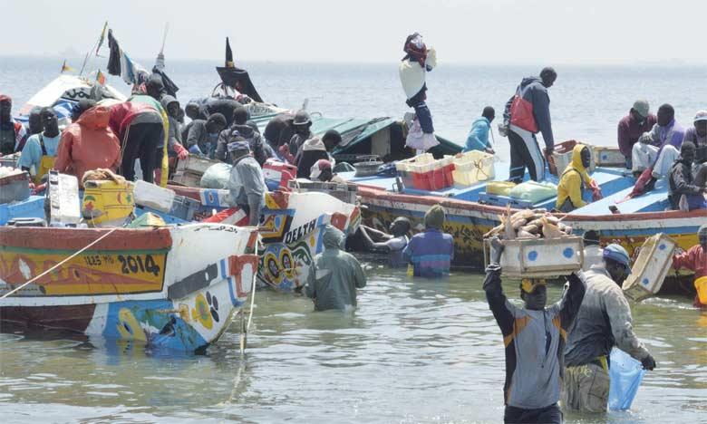 Selon la FAO, les pays en développement tributaires du poisson pour l'alimentation et l'exportation seront confrontés à un véritable défi pour s'adapter aux changements climatiques.  Ph. DR