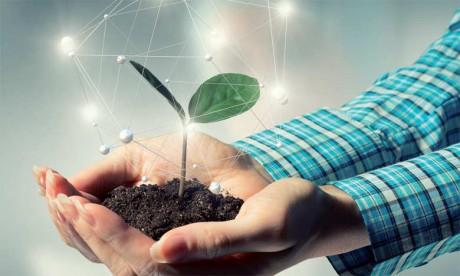 Les investissements  dans les startups en nette  augmentation