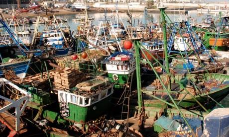 Pêche côtière et artisanale: stagnation des débarquements en 2018