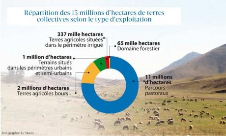 Les 96.000 hectares de terres collectives mobilisées ont drainé des investissements  de l'ordre de 20 milliards de dirhams et créé plus de 13.500 postes d'emploi