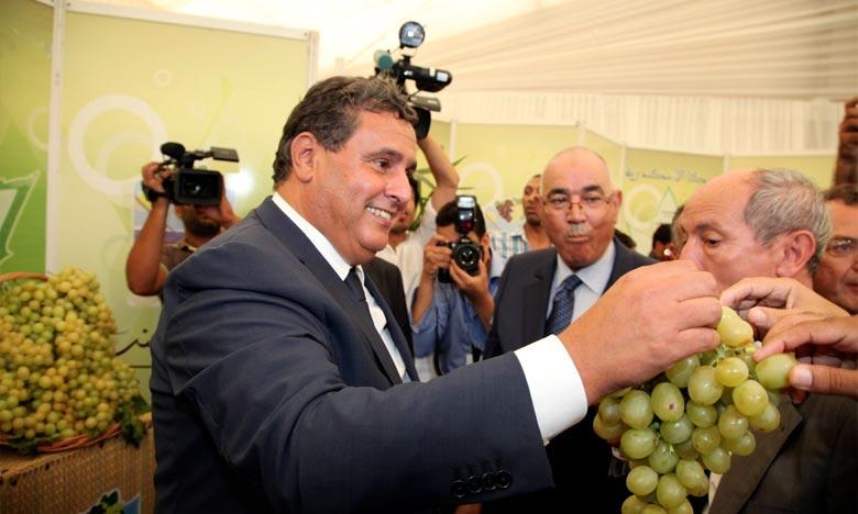 Akhannouch s'enquiert de l'état d'avancement du PMV à l'Oriental