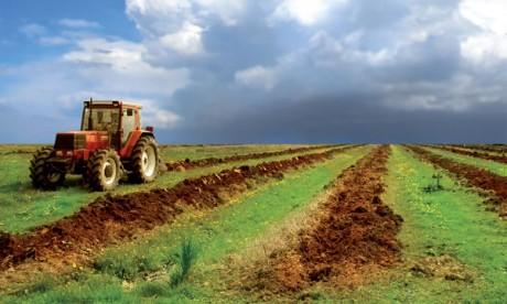 Campagne agricole: La superficie labourée  en hausse de 13%