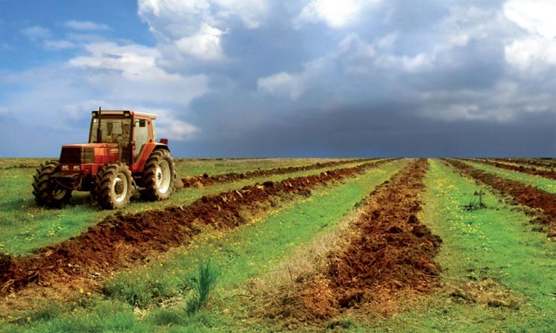 L'actuelle saison agricole se déroule dans  de bonnes conditions au niveau de la région à la faveur des conditions climatiques favorables.